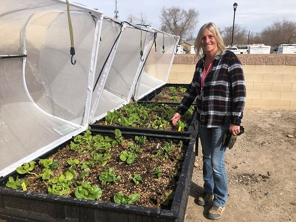Anita Lamb in the Life Center community garden